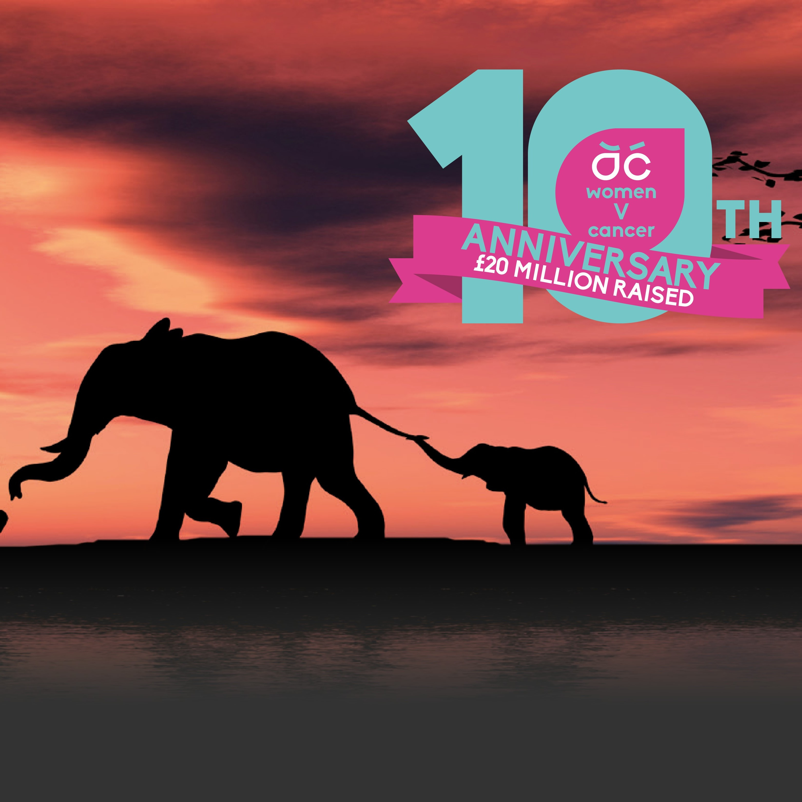 Women V Cancer Cycle Africa 2021 10-year anniversary adventure