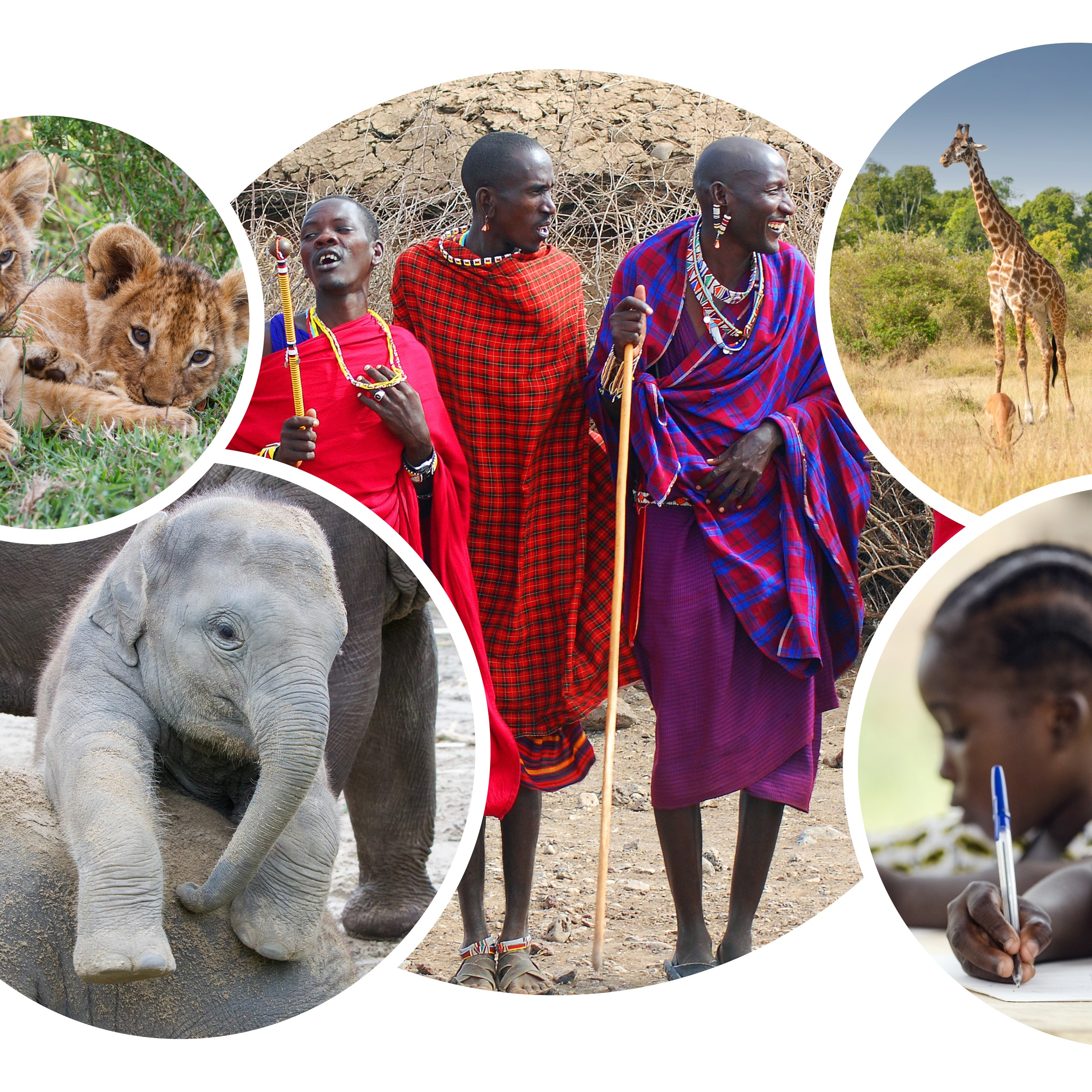 The Kenya Maasai Adventure Trek 2020 banner, featuring a baby elephant, lion cubs, a group of dancing Maasai Mara people, giraffes and local school children